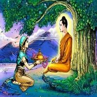 Đóng góp của các thương gia trong sứ mệnh hoằng dương Phật pháp