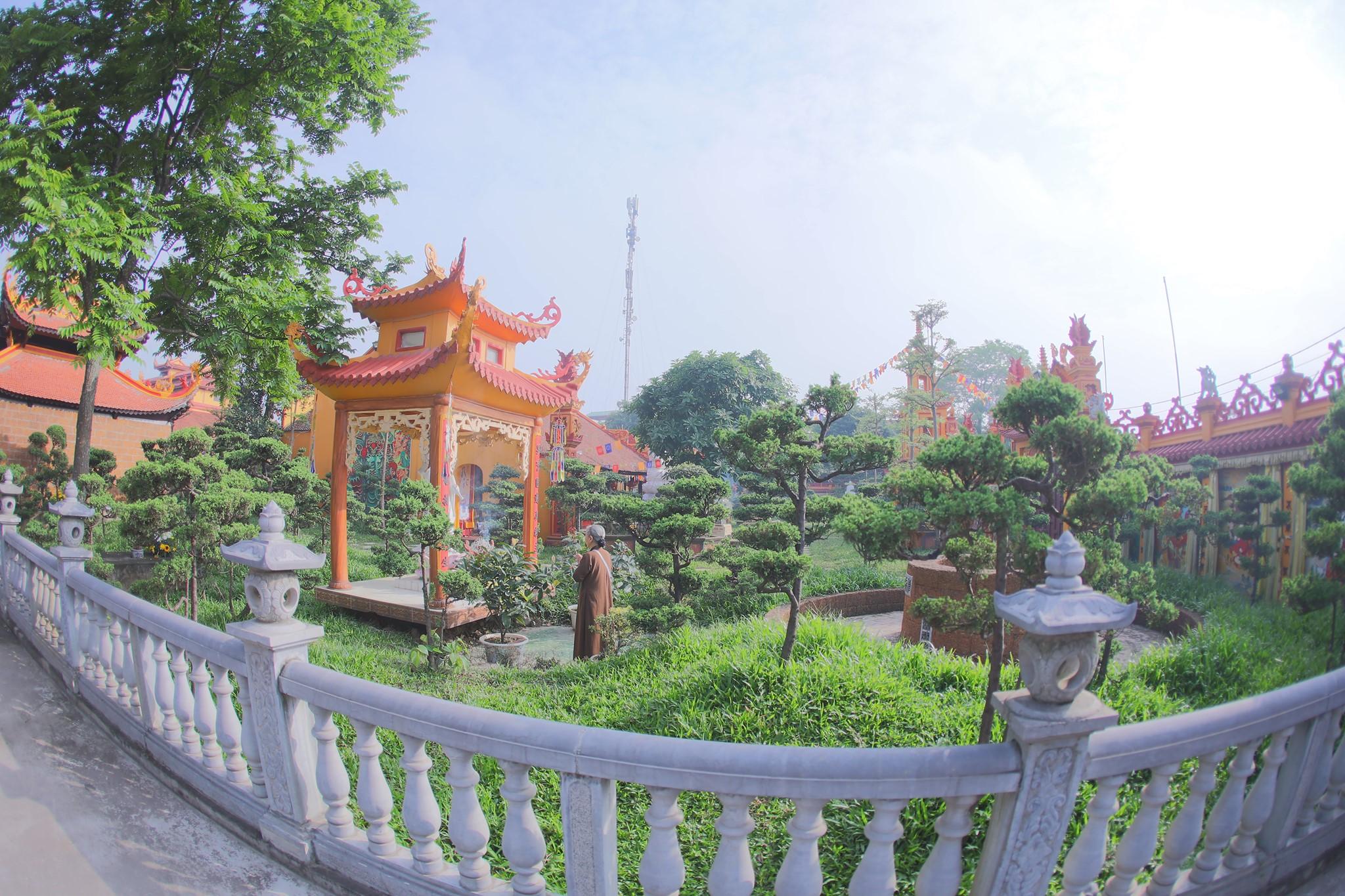 Canh chua Thang Nghiem (5)