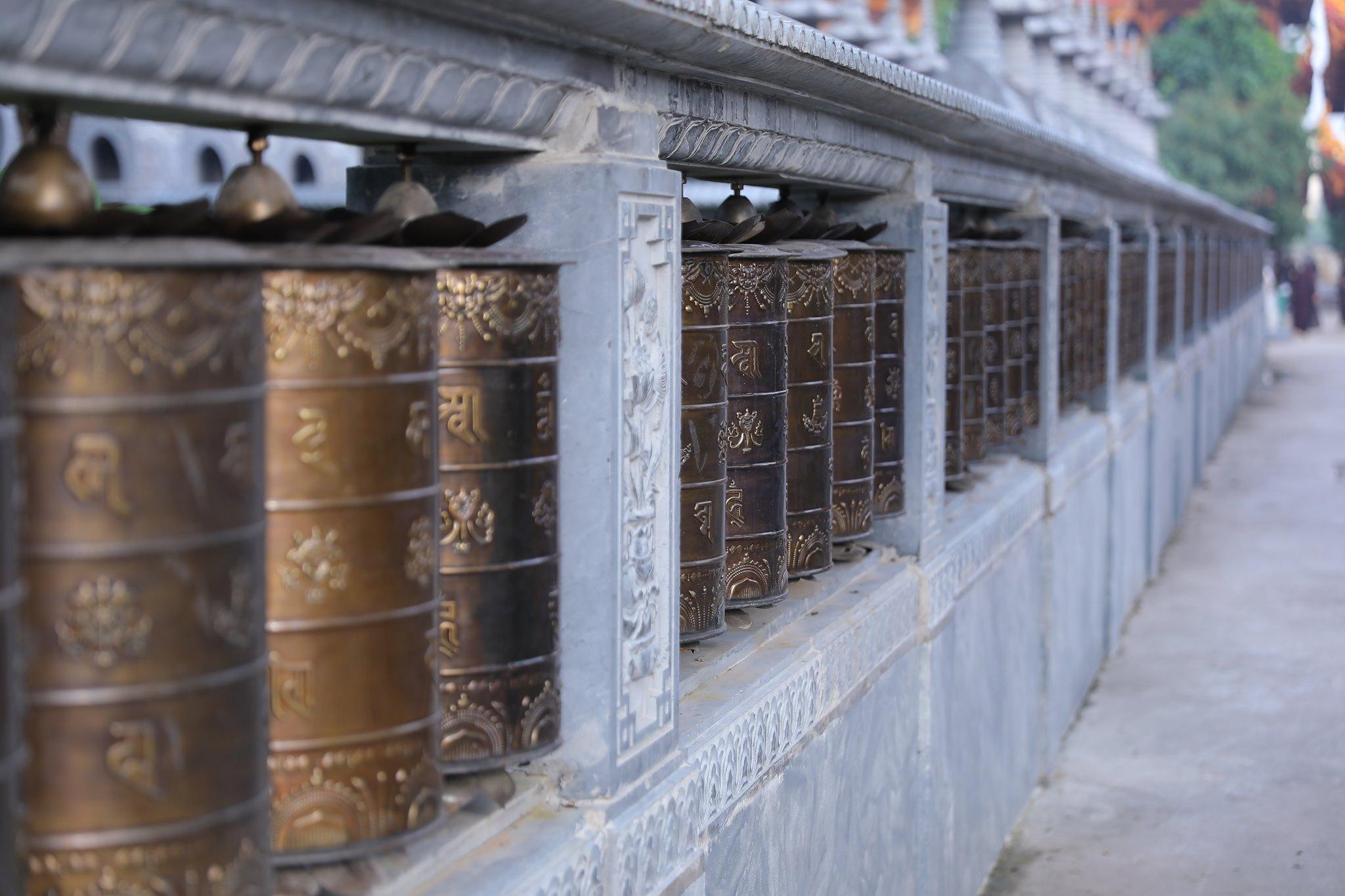 Canh chua Thang Nghiem (8)